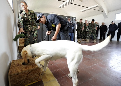 Dogs are soon being trained to detect ancient objects, in a similar fashion as this drug detection dog of the US Navy. Photo: Wikipedia.