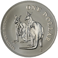 One dollar coin 1999.