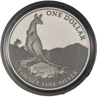 One dollar coin 2013.