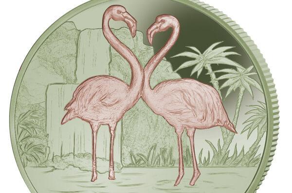 Amazon Com Iphone 11 Pro Flamingo Bird Bisexual 0